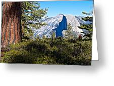 Half  Dome From Sentinel Dome Trail In Yosemite Np-ca Greeting Card