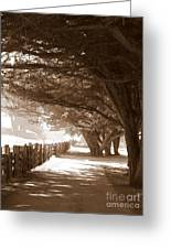 Half Moon Bay Pathway Greeting Card