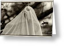 Halloween Goast Sepia Greeting Card