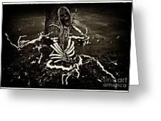 Halloween Green Skeleton Vinette Black And White Greeting Card