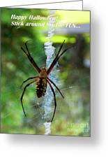 Halloween Spider Greeting Card by Annette Allman