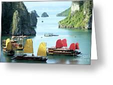 Halong Bay Sails 01 Greeting Card