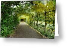 Hampton Court Palace Flower Tunnel Greeting Card