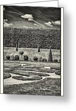 Hampton Court The Privy Garden Bw Greeting Card