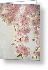 hanami II Greeting Card