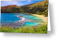 Hanauma Bay In Hawaii Greeting Card