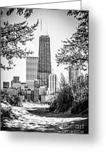 Hancock Building Through Trees Black And White Photo Greeting Card