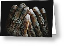 Hands Of Time 2 Greeting Card
