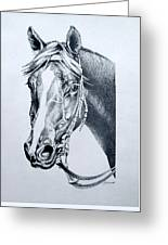Handsome Greeting Card by Patricia Howitt