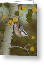 Hanging Around-red Breasted Nuthatch Greeting Card