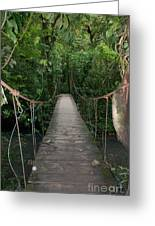 Hanging Bridge Greeting Card