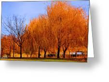 Hanging Leaves Greeting Card by Sarai Rachel