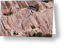 Hanging On To Dear Life - Enchanted Rock State Natural Area - Fredericksburg  Llano Greeting Card