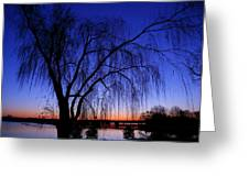 Hanging Tree Sunrise Greeting Card