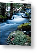 Hanson Brook Greeting Card