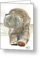 Happy Baby Elephant Greeting Card