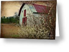 Happy Barn In Spring Greeting Card by Lorraine Heath