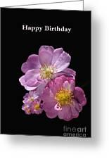 Happy Birthday Pink Roses Greeting Card