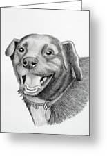 Happy Dawg Greeting Card by Lorraine Foster