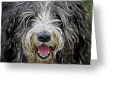 Happy Dog Greeting Card