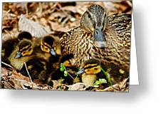 Happy Family Greeting Card by Frozen in Time Fine Art Photography