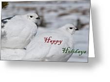 Happy Holidays - Winter Ptarmigan Greeting Card