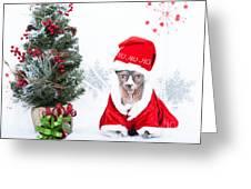Xmas Holidays Greeting Card 108 Greeting Card