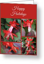 Happy Holidays Natural Christmas Card Or Canvas Greeting Card