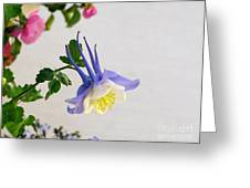 Happy Little Columbine Greeting Card