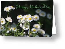 Happy Mother's Day 03 Greeting Card