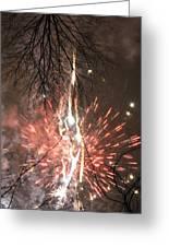 Happy New Year 2014 Three Greeting Card