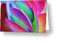 Happy Time Greeting Card