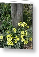 Happy Yellow Flowers Greeting Card