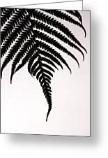Hapu'u Frond Leaf Silhouette Greeting Card