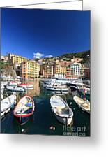 Harbor With Fishing Boats Greeting Card