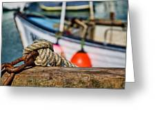 Harbour Knots Greeting Card