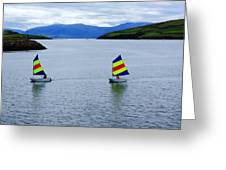 Harbour Sailing Greeting Card