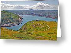 Harbour View From Signal Hill National Historic Site In Saint John's-nl Greeting Card