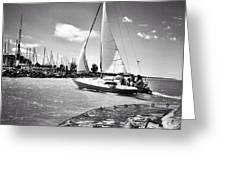 Hard Sailing Greeting Card