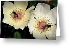 Hard Working Bee Twins  Greeting Card