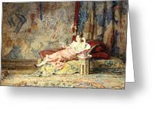 Harem Beauty Greeting Card