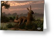 Hares In The Wetlands Greeting Card