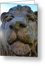 Harlaxton Lions Greeting Card