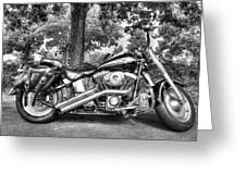 Harley D. Iron Horse Greeting Card by Sergio Aguayo