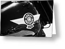Harley Davidson Aviation Themed Star Logo On Fat Boy Bike In Orlando Florida Usa Greeting Card