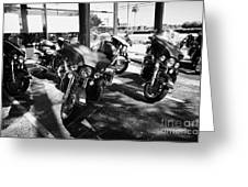 Harley Davidson Touring Motorbikes Including Electra Glide Outside Dealership In Orlando Florida Usa Greeting Card