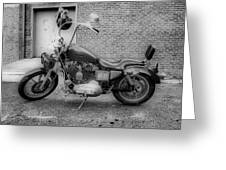 Harley In Black And White Greeting Card