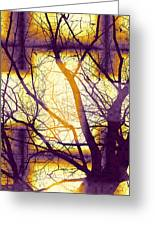 Harmonious Colors - Violet Yellow Orange Greeting Card