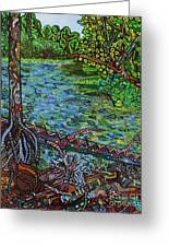 Harpeth River Greeting Card