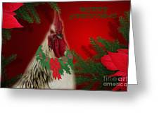 Harry Christmas Wishes Greeting Card